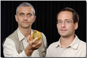 Dr. Gabor Domoko , Gomboc, and Dr. Peter Varkonyi