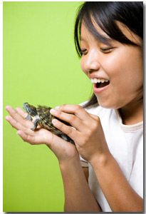 young girl with her healthy turtle