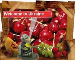 Wild Cherry tortoise from Ukraine