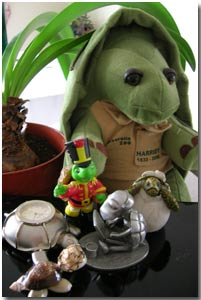 shelly the Solo Build It tortoise and her friend wonder who is the fariest of them all